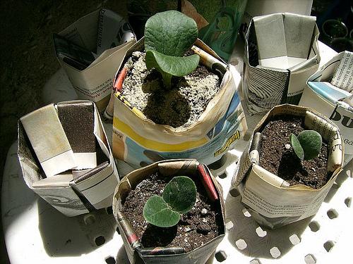 Κρατάμε τα καλαθάκια απο μανιτάρια και φράουλες για σπορές - Έχουν αρχίσει και μας φαγουρίζουν για τα καλά τα πρασινοδάχτυλα μας και προετοιμαζόμαστε για τις σπορές μας