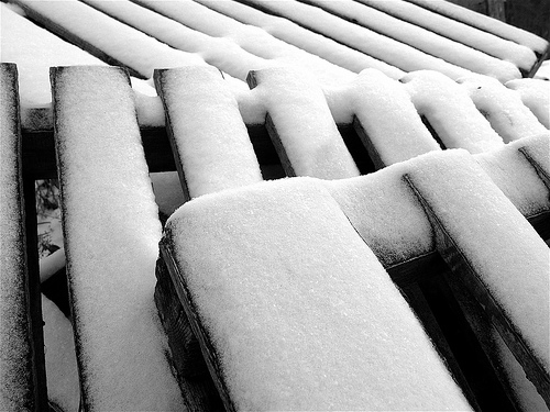 Δέκα φωτογραφίες του Νοέμβρη - Νέος μήνας μπροστά μας ξεκινά. Λίγο πιο κρύος, λίγο πιο σκοτεινός, λίγο πιο όμορφος με τα πρώτα γιορτινά στολίδια να στολίζουν τους δρόμους και τα σπίτια δειλά δειλά.