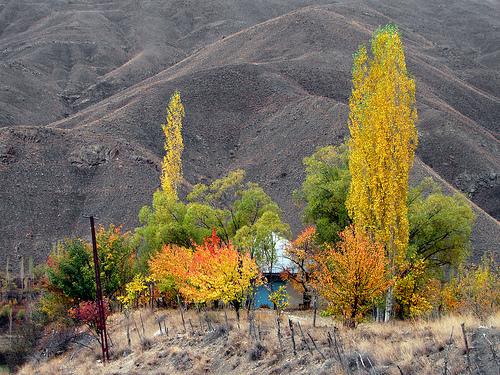 Δέκα φωτογραφίες του Οκτώβρη - Ο Οκτώβρης είναι ο μήνας που αλλάζει χρώμα η φύση μια και τα φύλλα στα δέντρα ξεκινούν να κοκκινίζουν και στη συνέχεια δημιουργούν ένα πανέμορφο κόκκινο χαλί στους δρόμους.