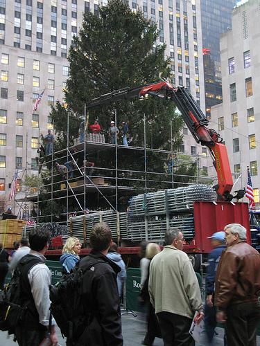 Η προετοιμασία του Χριστουγεννιάτικου δέντρου στο εμπορικό κέντρο Rockefeller της Νέας Υόρκης - Στην κορυφή του το χριστουγεννιάτικο δέντρο θα έχει ένα εκπληκτικό αστέρι διακοσμημένο με 25.000 κρύσταλλους Swarovski διαμέτρου 3 μέτρων με βάρος 250 κιλά!