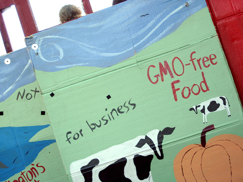 Νέοι κανόνες για τα νέα τρόφιμα από κλωνοποιημένα ζώα - Τα τρόφιμα που προέρχονται από κλωνοποιημένα ζώα δεν θα πρέπει να διατίθενται στην αγορά και τα προερχόμενα από νανοτεχνολογίες τρόφιμα θα πρέπει να εγκρίνονται πρώτα