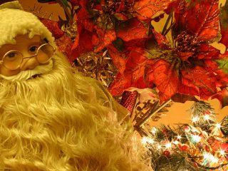 Χριστουγεννιάτικες φωτογραφίες