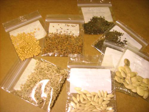 Ανταλλαγές Παραδοσιακών Σπόρων 2013-2014 - Έχεις παραδοσιακούς σπόρους λαχανικών; αντάλλαξε τους  και αποκτήσε άλλους και να πληθύνουν οι διατηρητές φυσικών σπόρων