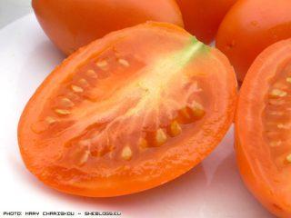 Πως να σώσετε σπόρους ντομάτας