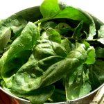 Πράσινη σαλάτα γλάστρας
