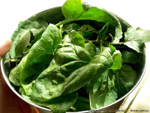 Πράσινη σαλάτα γλάστρας - Γιατί η χαρά της αστικής κηπουρικής είναι και στην συγκομιδή....