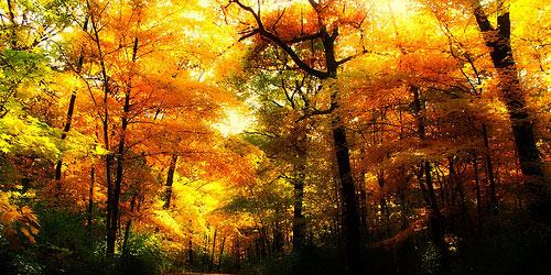 Οι αγαπησιάρικες μέρες του Οκτώβρη - Ένα περίεργο καιρικό μοτίβο που επαναλαμβανεται φέτος και το χαιρόμαστε για τις ηλιόλουστες μέρες του