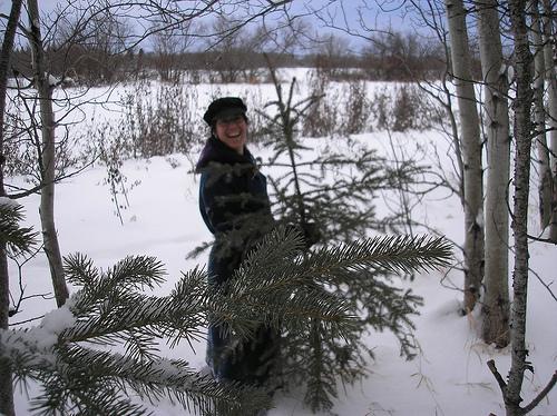 Θα έκοβες το δικό σου Χριστουγεννιάτικο δέντρο; - Αν είχες τη δυνατότητα να διαλέξεις και να κόψεις το δικό σου Χριστουγεννιάτικο δέντρο νόμιμα θα ανέβαινες στο βουνό;