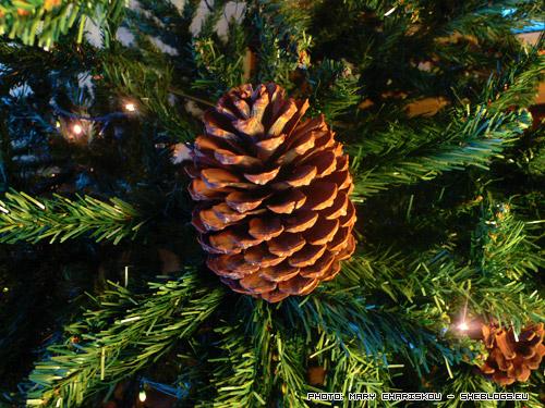 Προσθέστε τεράστια κουκουνάρια στο χριστουγεννιάτικο δέντρο σας - Βγειτε μια βόλτα στο κοντινό πευκόδασος να ψάξετε τεράστια κουκουνάρια αν δε φροντίσατε να μαζέψετε από πριν τις γιορτές
