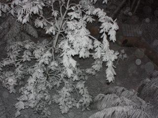 Τα πρώτα χιόνια στην Αθήνα
