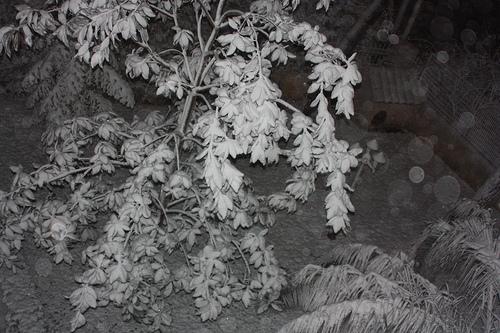 Τα πρώτα χιόνια στην Αθήνα - Λευκή ήταν η νύχτα σήμερα για διάφορες περιοχές των Αθηνών και ομολογούμε οτι ζηλεύουμε οι υπόλοιποι που λαχταράμε το χιόνι