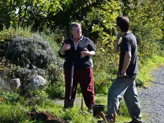 Τα λάθη των κηπουρών του Σαββατοκύριακου την άνοιξη