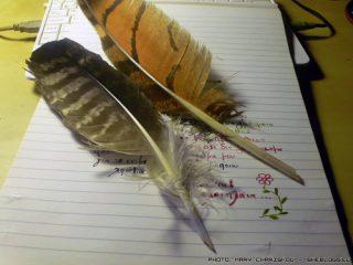 Φτιάξτε εύκολα πένες από φτερά