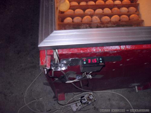 klosomixani 5 Αυτοσχέδια Κλωσσομηχανή   Θερμομάνα για κότες και άλλα πτηνά