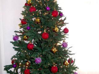 Αγόρασε ένα πλαστικό Χριστουγεννιάτικο Δέντρο αν δεν έχεις