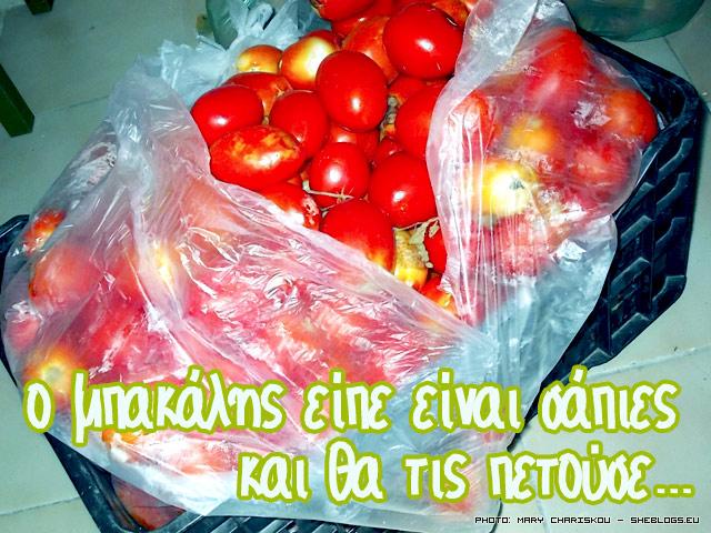 tomato-2014