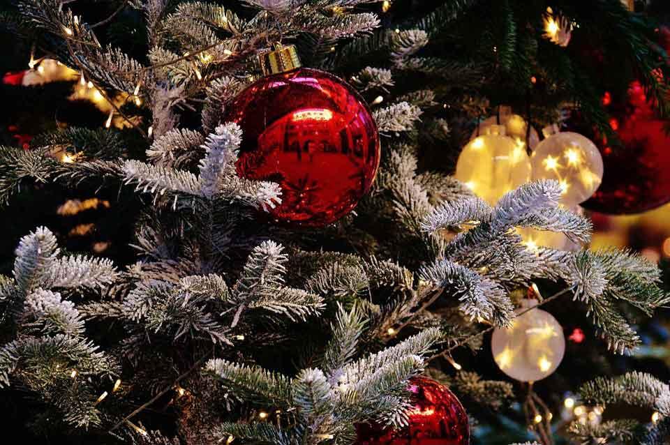 Αληθινό ή πλαστικό Χριστουγεννιάτικο δέντρο