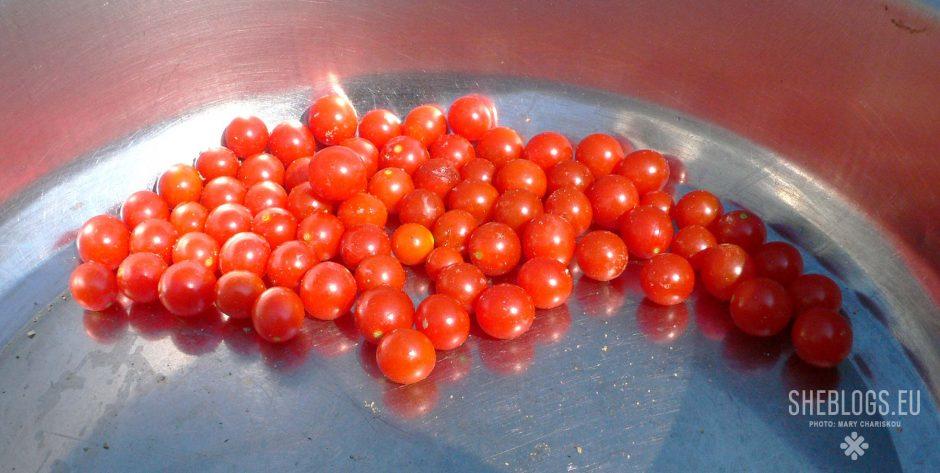 Οι πιο μικροσκοπικές ντομάτες που έχεις δει