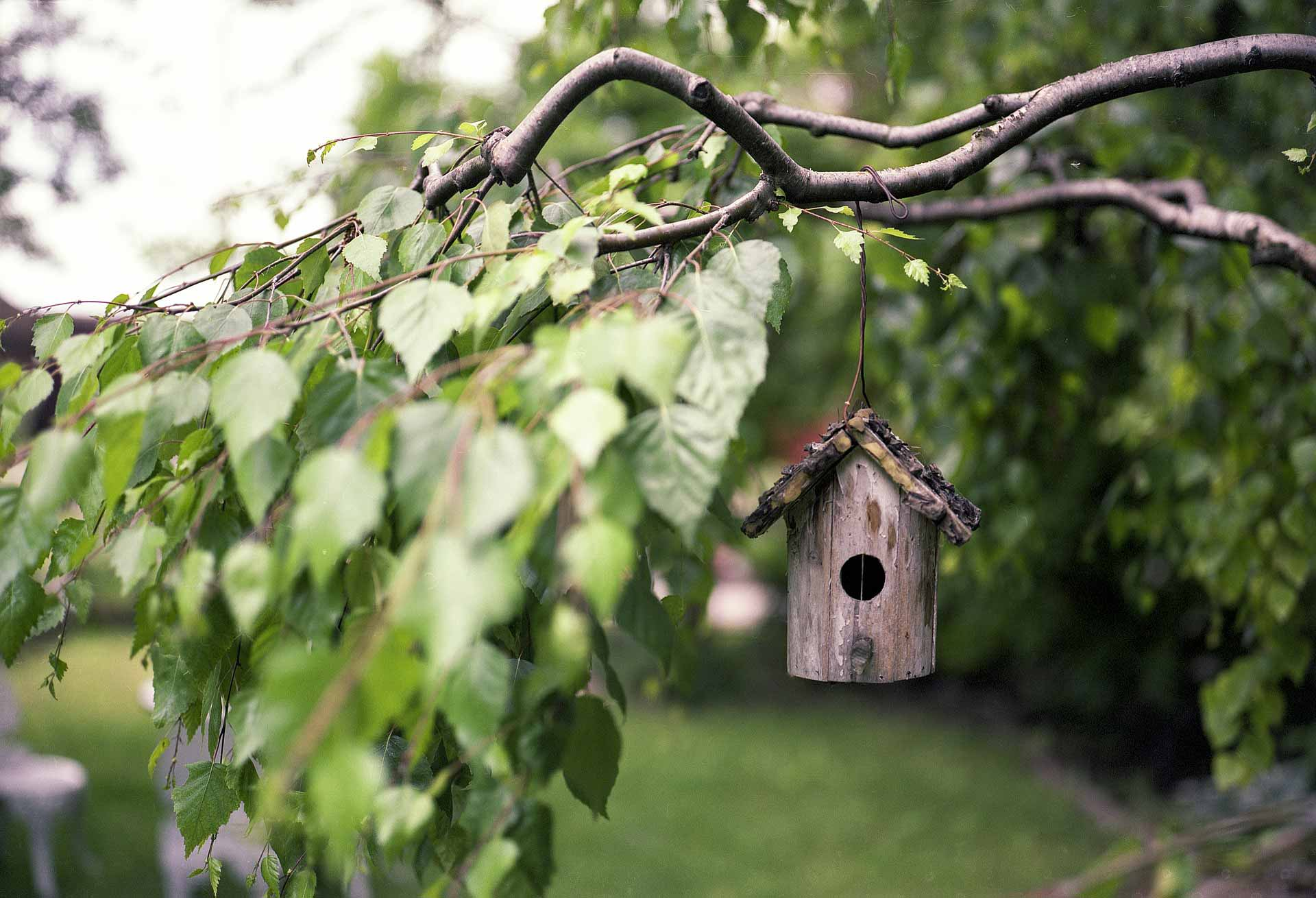 Έφτασε η εποχή για να φροντίσετε τα ξύλινα έπιπλα κήπου